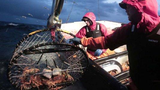 """Aquecimento global coloca """"Pesca Radical"""" em risco"""