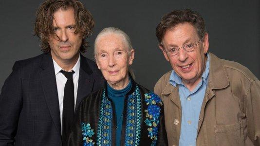 National Geographic estreia documentário inédito sobre Jane Goodall