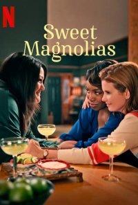 Poster da série Sweet Magnolias (2020)