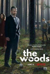 Poster da série Morte no Bosque / W głębi lasu (2020)