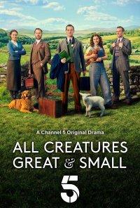 Poster da série Veterinário de Província / All Creatures Great & Small (2020)