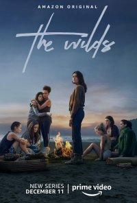 Poster da série The Wilds - Vidas Selvagens / The Wilds (2020)