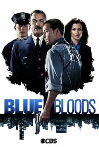 Poster da série Blue Bloods (2010)