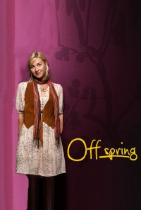Poster da série Descobrindo Nina / Offspring (2010)