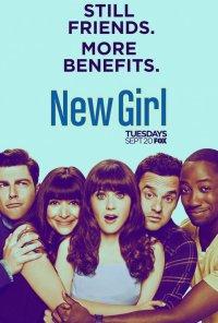 Poster da série Jesse e os Rapazes / New Girl (2011)