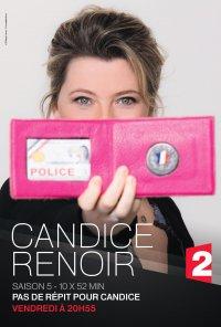 Poster da série Candice Renoir (2013)