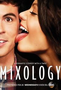 Poster da série Combinados / Mixology (2013)