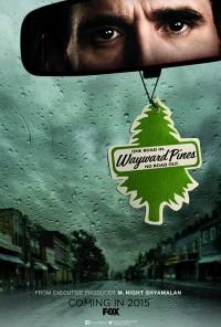 Poster da série Wayward Pines (2015)