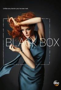 Poster da série Black Box (2014)