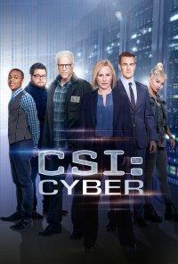 Poster da série CSI: Cyber (2015)