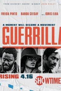 Poster da série Guerrilla (2017)