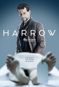 Poster da série Harrow (2018)