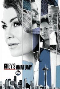 Poster da série Anatomia de Grey / Grey's Anatomy (2005)