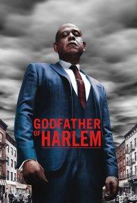 Poster da série Godfather of Harlem (2019)