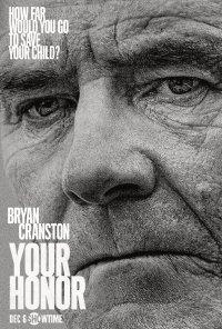 Poster da série Your Honor (2020)