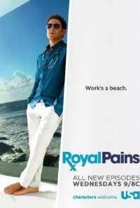 Poster da série Mágoas de Grandeza / Royal Pains (2009)