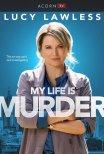A Minha Vida Dava Um Crime
